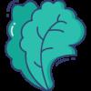 039-lettuce